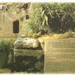 O Jardim da Tumba